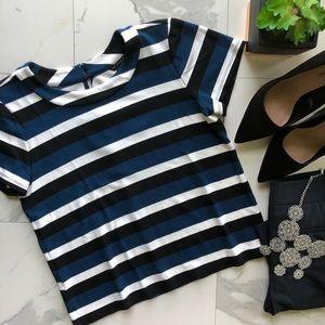 Ann Taylor LOFT Blue and Black Striped Top